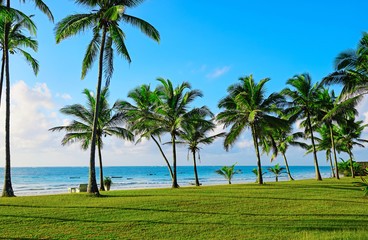 Beach Diani