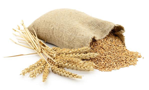 Bag of wheat.