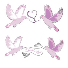 Set of a pair wedding doves with a ribbon in beak