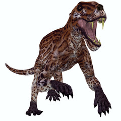 Lycaenops Permian Cat - Lycaenops was a carnivorous mammal-like reptile that lived in South Africa during the Permian Period.