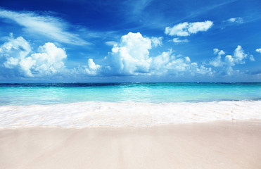 Wall Mural - sand of beach caribbean sea
