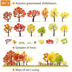 Autumn greenwood. Defoliation. Set 5. (Autumn deciduous forest.)