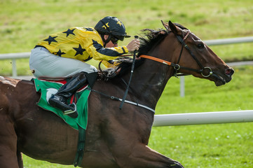 close up of race horse and jockey speeding down the race track