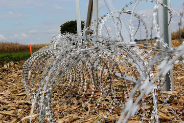 Barbed wire installing on the Hungarian-Croatian border