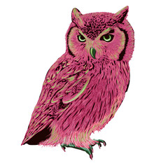 Pink eagle owl with green eyes