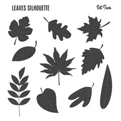 Collection of leaf silhouettes