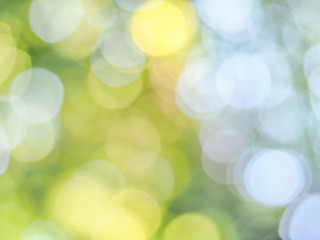 Green, yellow and white bokeh from nature background in the bright day.