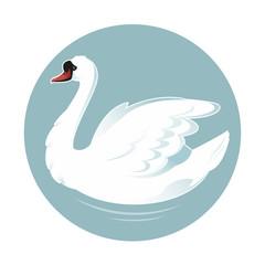 Cartoon swan
