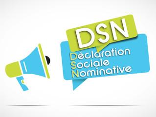 mégaphone : DSN (Déclaration Sociale Nominative) acronyme