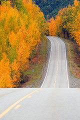 Wall Mural - Fall Color Autumn Landscape Alaska Two Lane Road Highway