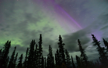 Northern Lights Aurora Borealis Alaska Night Sky Astronomy