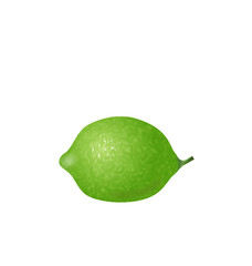 Photo Realistic Lime Isolated