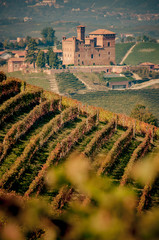 Wall Mural - Castle of Grinzane Cavour in the Langhe region