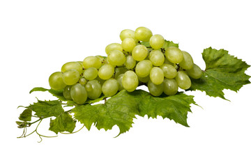 Bunch of green  grapes and leaves against white background