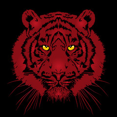 Tiger head - vector illustration
