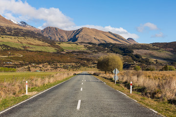 asphalt road through the field