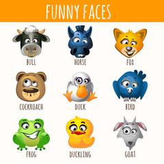 Animal funny faces