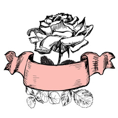 Isolated roses with old styled ribbon
