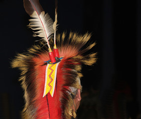 Native American Feathered Headdress at Powwow