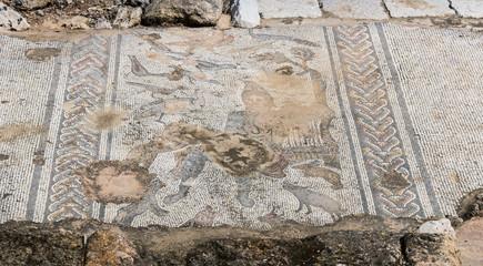 Tzipori archeological site