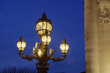 Alexandre III bridge, Paris, Ile-de-france, France