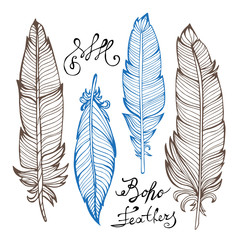 Hand drawn bird feathers closeup isolated on white