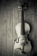 Violin on wood background. Top view.