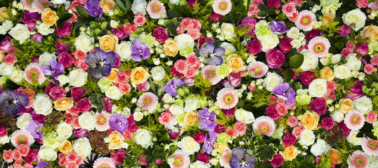 Printed kitchen splashbacks Floral fondo de flores
