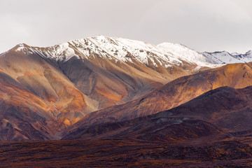 Wall Mural - Fall Color Snow Capped Peak Alaska Range Fall Autumn Season