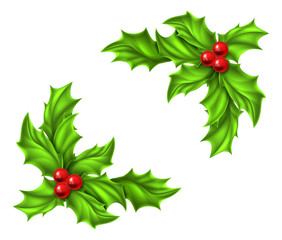 Christmas Holly Design