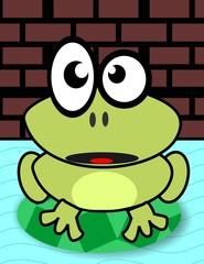 flooded frog