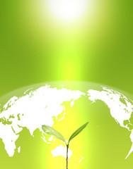 ワールドエコロジー