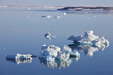 Icebergs on still water