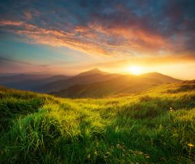 Aluminium Prints Mountains Mountain valley during sunrise. Natural summer landscape