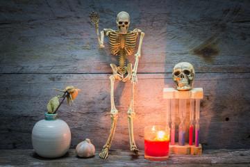 Human Skeleton sit on wooden background
