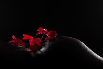 Körperlandschaft Rücken Po mit Orchidee