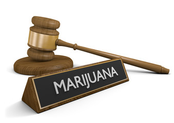 Federal and state law on marijuana drug use