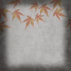 秋 もみじ 背景素材