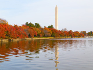 Washington Monument and the Tidal Basin in autumn. The Monument is surrounded by trees in the colorful foliage during the Fall in DC, USA.