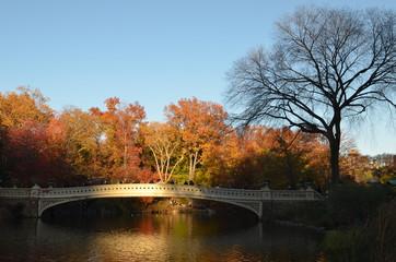 Central Park in the autumn. Manhattan, New York