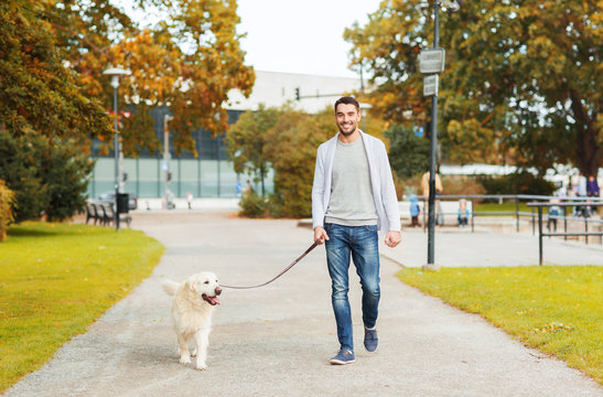 happy man with labrador dog walking in city park