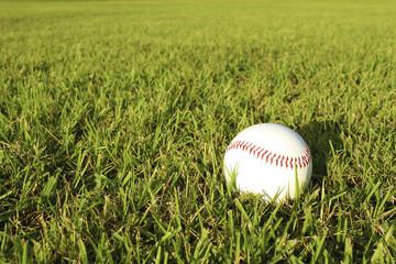 Baseball ball and lawn