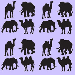 Illustration background with camels and elephants. Seamless pattern.