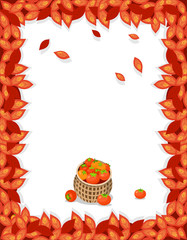 Falling leaves in red and orange in antumn B