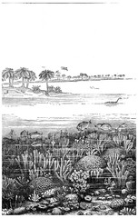 The age of the Jurassic sea at Burgundy, France, vintage engravi
