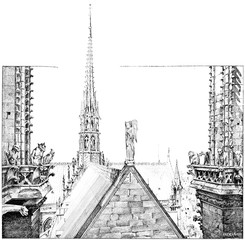 The area lead Notre Dame, vintage engraving.