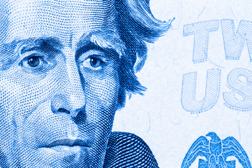 Close up to Andrew Jackson portrait on twenty dollar bill. Toned