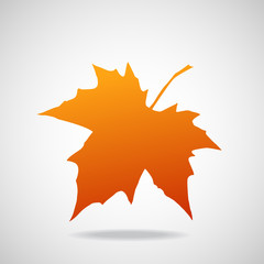 Silhouette of the maple leaf. Canadian symbol. Vector illustration. Eps 10