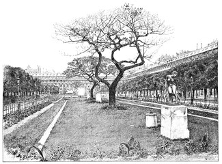 Royal-palace garden, the lawn of the south, vintage engraving.