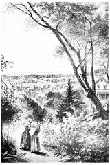The view stretched over the entire city, vintage engraving.